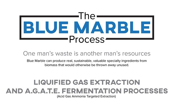 Blue Marble Process Infographic